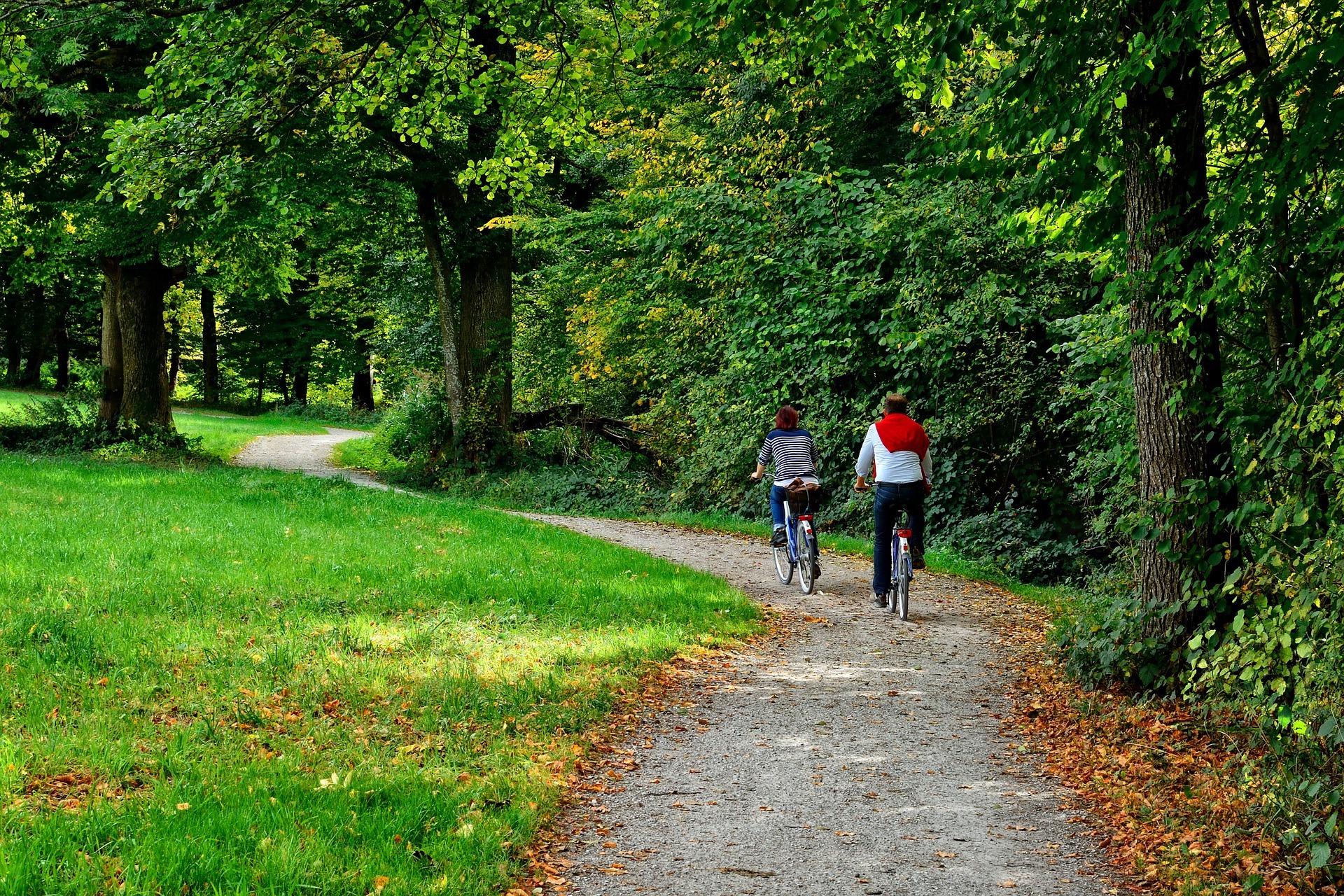 Paar radelt im Harz